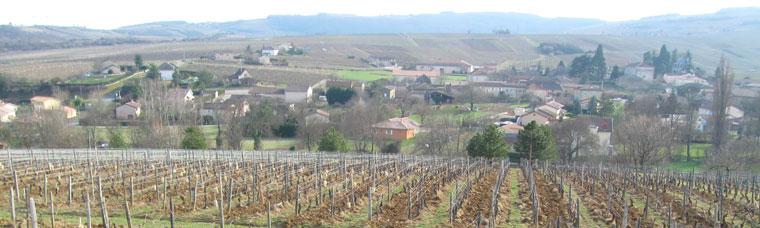 Cru Saint-Véran Bourgogne 71